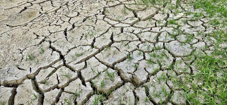 Dünya Sağlık Örgütü: iklim değişikliği 21'inci yüzyılda en büyük sağlık tehdidi olabilir