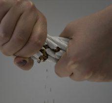 Türk bilim insanları nikotinin bağışıklık sistemini 'saldırganlaştırdığını' kanıtladı