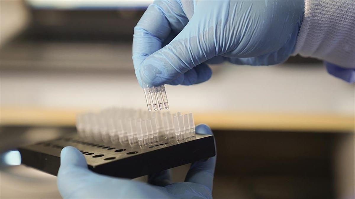 Mikrobiyologlar uyarıyor: Aşı sonrası antikor testine güvenerek tedbirleri elden bırakmayın
