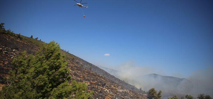 Bodrum ve Milas'taki orman yangınlarına 3 uçak ve 12 helikopterle müdahale ediliyor